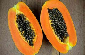Awesome Papaya Benefits | All You Need To Know About It