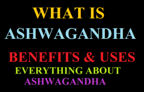 Every About Ashwagandha | Benefits & Uses