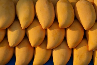 mango benefits